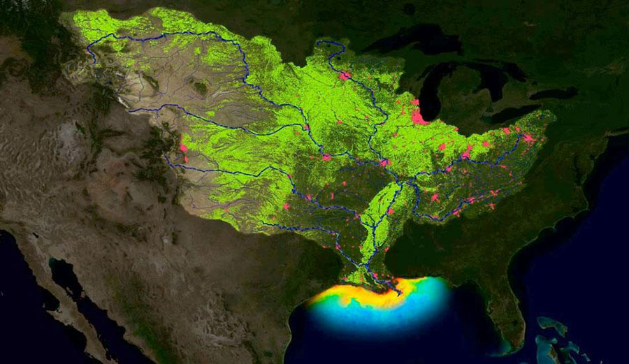 NOAA is predicting the third largest Gulf of Mexico summer 'dead zone' ever for 2017. (NOAA)