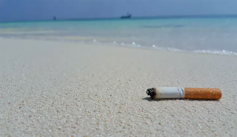 Cigarette butts last much longer than you might think.