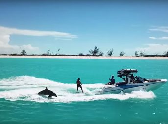 While wakesurfing in the Turks and Caicos, Mark de Fraine and Nathaniel Taylor were joined by a pair of playful dolphins.