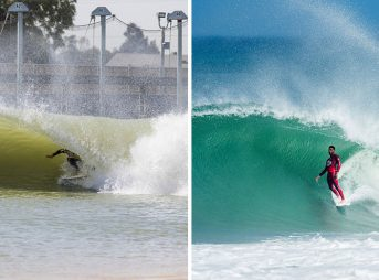 A rose by any other name would smell as sweet. Photos: WSL