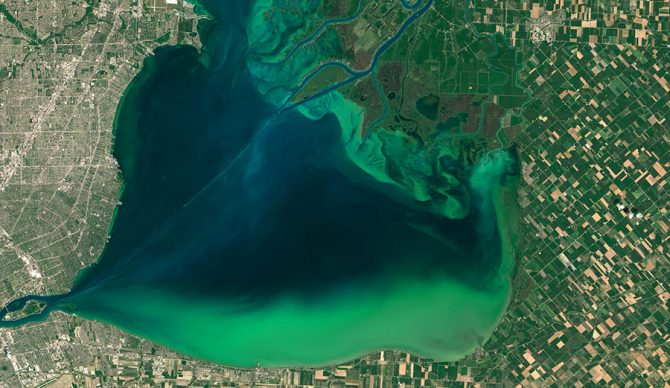 Blooms of algae, like this growth in 2015 in Lake St. Clair between Michigan and Ontario, promote the formation of dead zones. Image: NASA Earth Observatory, CC BY