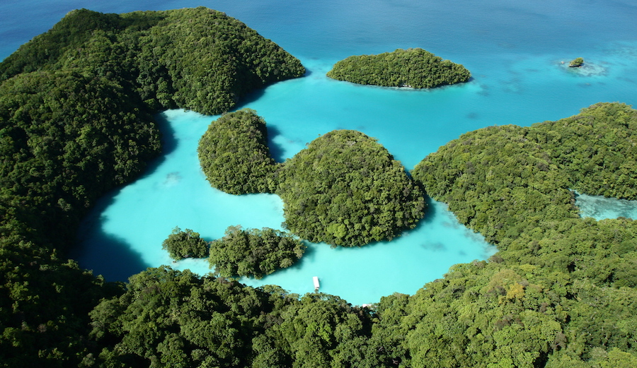 Palau not only just banned sunscreens known to harm coral reefs. By 2020, if you're caught using them you could be slapped with a heavy fine. Photo: Wikimedia Commons