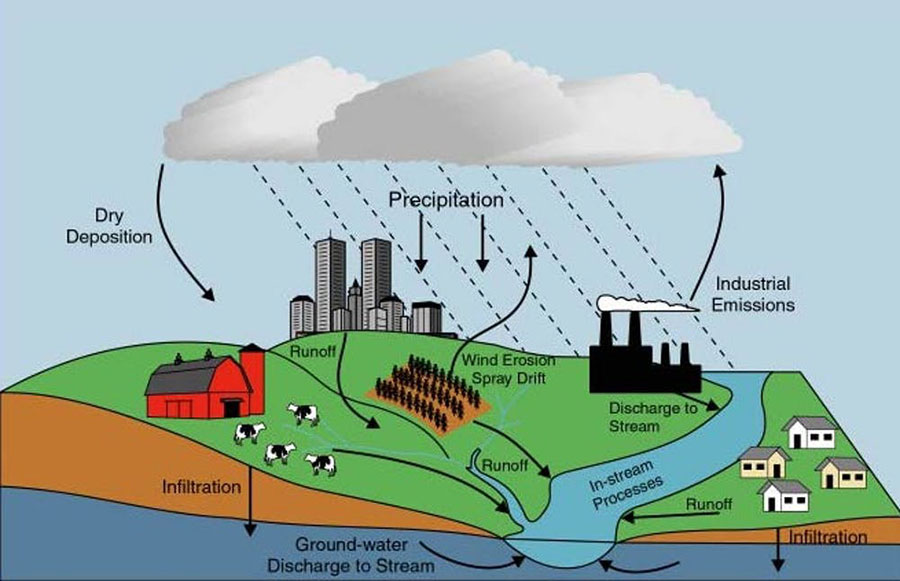 Nutrient pollution sources include decaying organic material; fertilizers applied to crops, lawns and golf courses; manure from fields or feedlots; atmospheric deposition; groundwater discharge; and municipal wastewater discharge. USGS