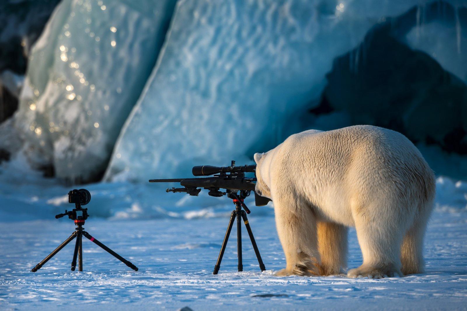 Arctic sniper. Photo: Reddit/u/SalazarRED