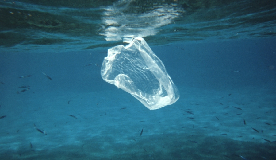 The 2018 Statistic of the Year is 90.5 percent. It's the share of plastic in our world that's never been recycled and is taking its toll on the environment. Photo: NOAA