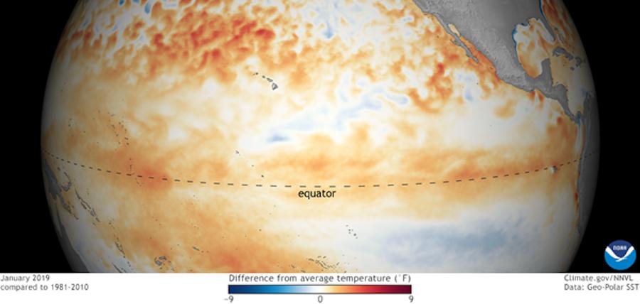 February 2019 Ocean Temps NOAA