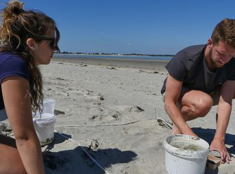 citizen scientists helping Plastic pollution study
