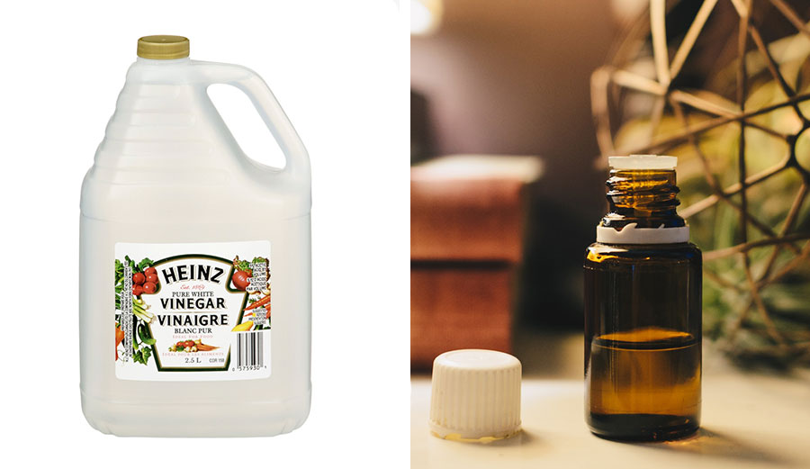 White vinegar and essential oils