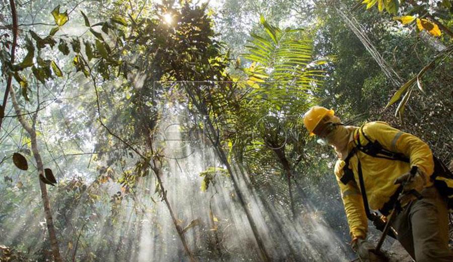 A fireman work to extinguish a fire at a forest near Porto Velho, Brazil