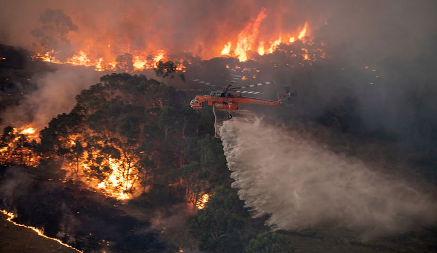 Brushfire in Australia