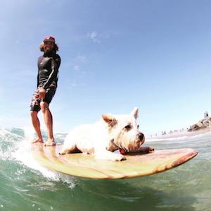 Timmy Reyes loves longboarding