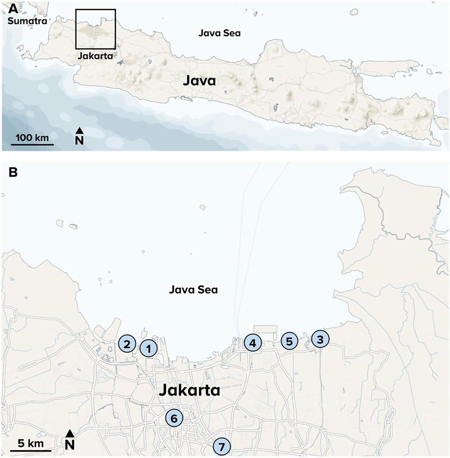 Java, Jakarta and the Java Sea