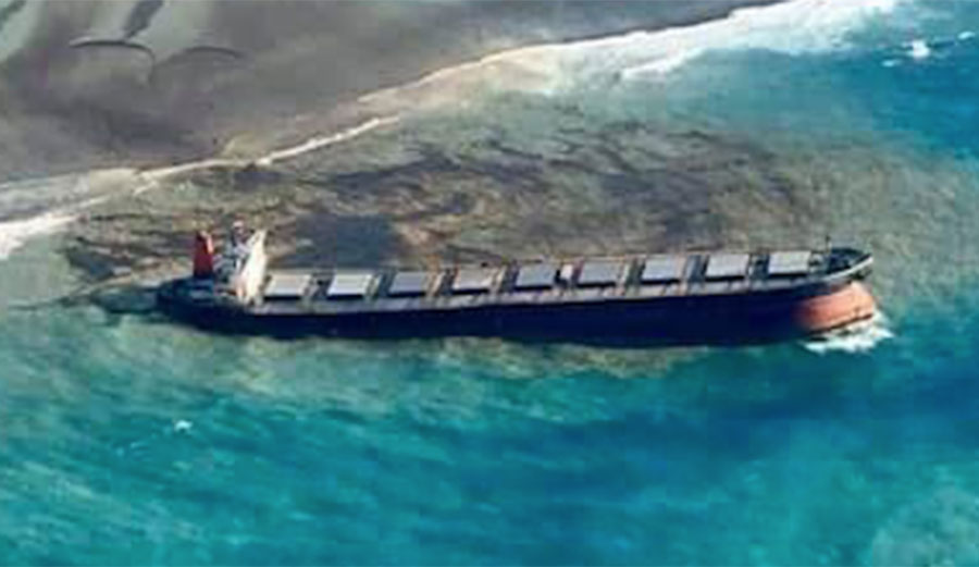 The MV Wakashio ran aground on Jul 25. Now surfers are signing an open letter to the shipping company responsible.
