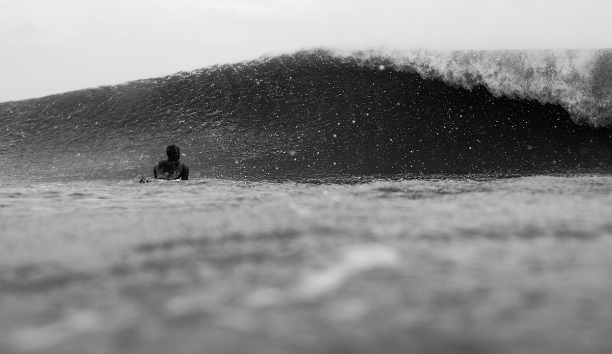 Surfer looking at a perfect wave