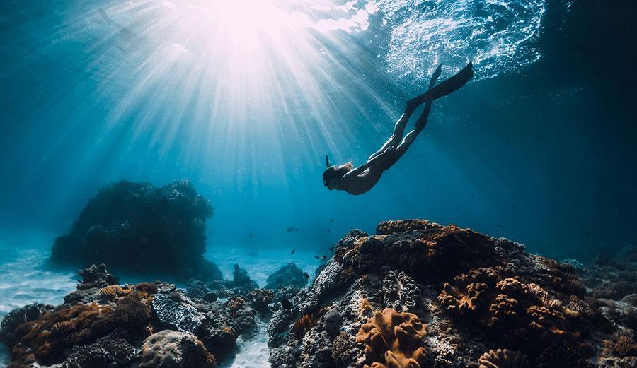 Diver in Pacific Ocean