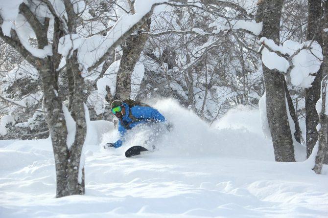 powder snowboarding at Hachimantai ski resort japan