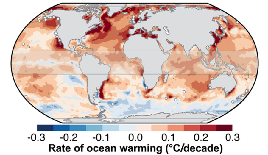 Rate of warming of the surface ocean over the past 50 years.
